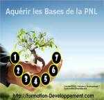 Stage Bases PNL